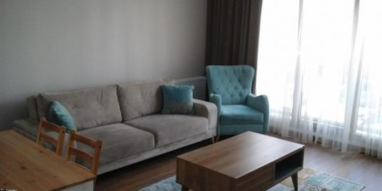1+1 FURNISHED APARTMENT IN BİRLİK